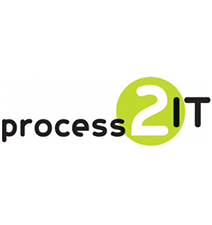 Process 2 IT consultancy